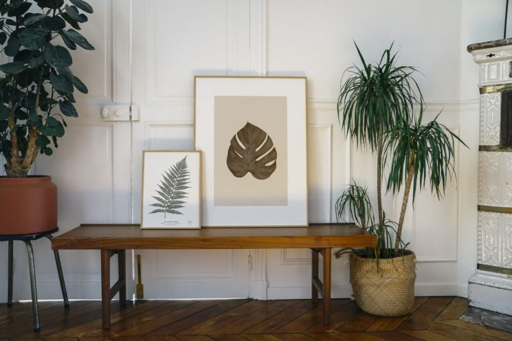 Les herbiers de fleurs séchées, signés Herbarium