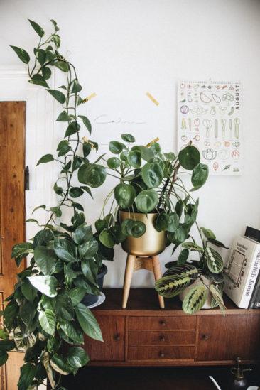 [ Inspi déco ] Des intérieurs qui ont la main verte || L'appartement bohème minimal de Julia @juloxyy