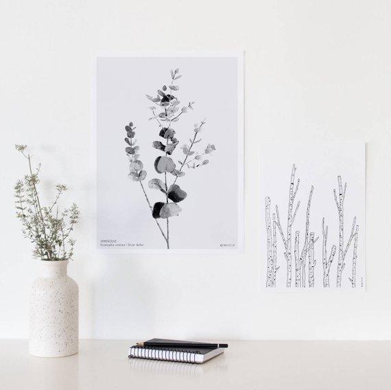 Affiche Eucalyptus Cinerea - Boutique Etsy Micush