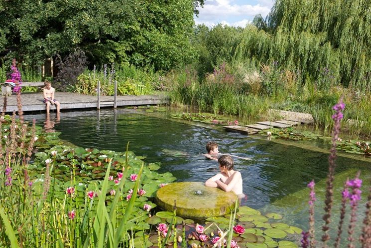 Tendance piscine naturelle
