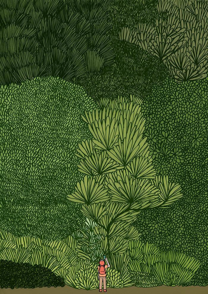 La couleur verte en déco // Forrest par Jean Julien