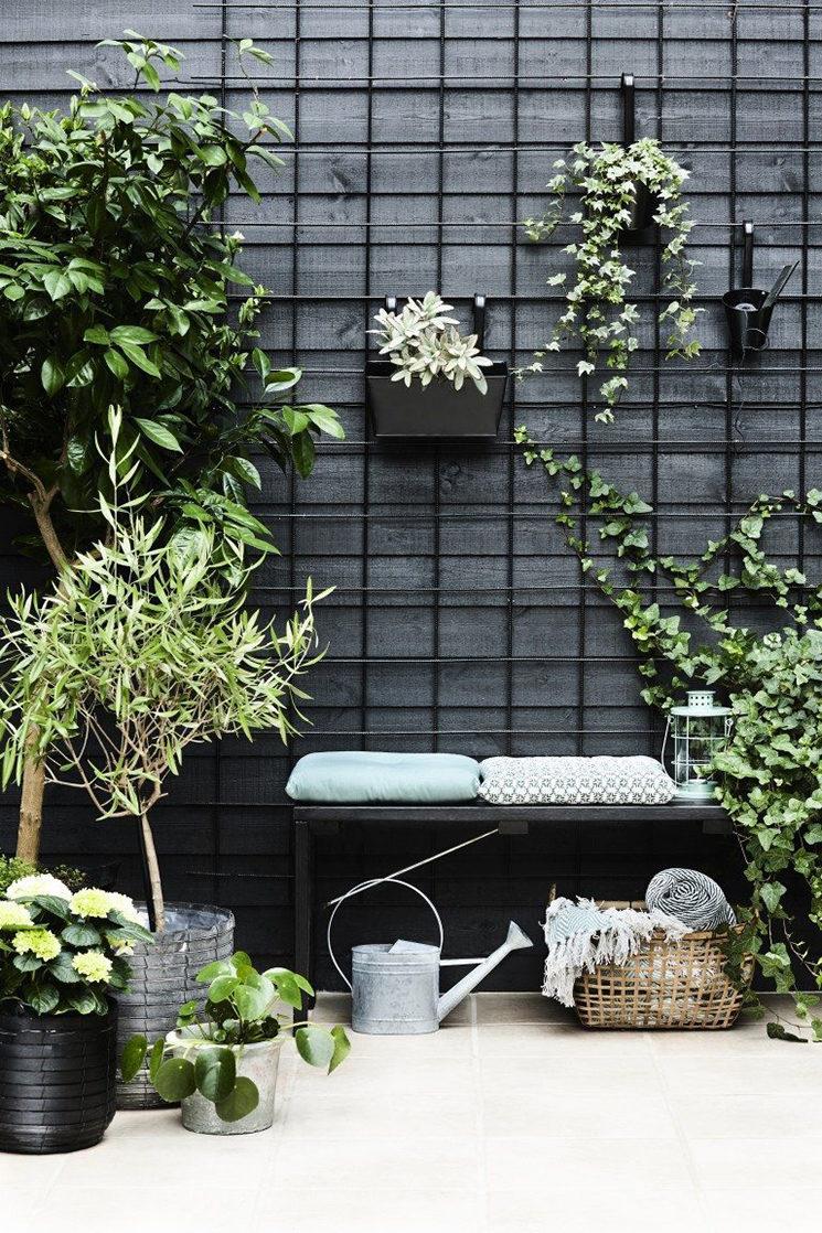 Habiller un mur noir de végétaux pour créer mettre le vert en valeur