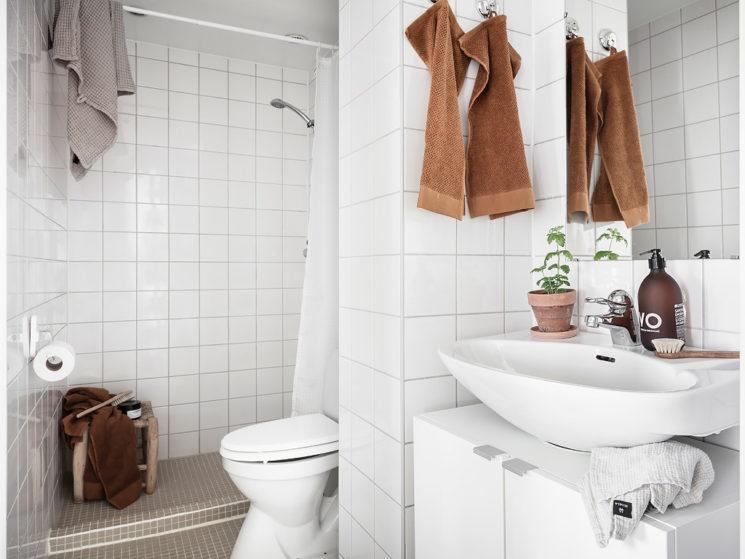 Toilettes séparées du lavabo par une colonne