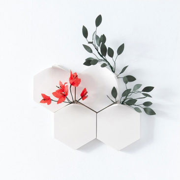 Vases muraux modulaires, Teumsae On Wall - Extra&Ordinary Design