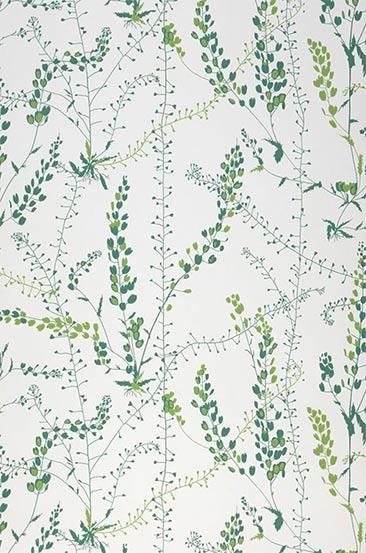 Papier-peint botanique - Modèle de papier-peint Alanna