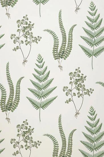 Papier-peint botanique - Modèle de papier-peint Natali