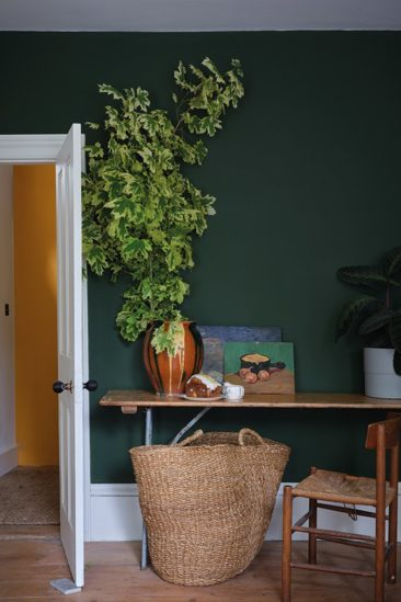 Farrow&Ball nuancier Naturel History Museum- Teinte Duck Green