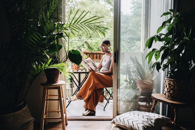 Extrait de Plant Tribe – Living Happily Ever After with Plants d'Igor Josifovic et Judith De Graaff