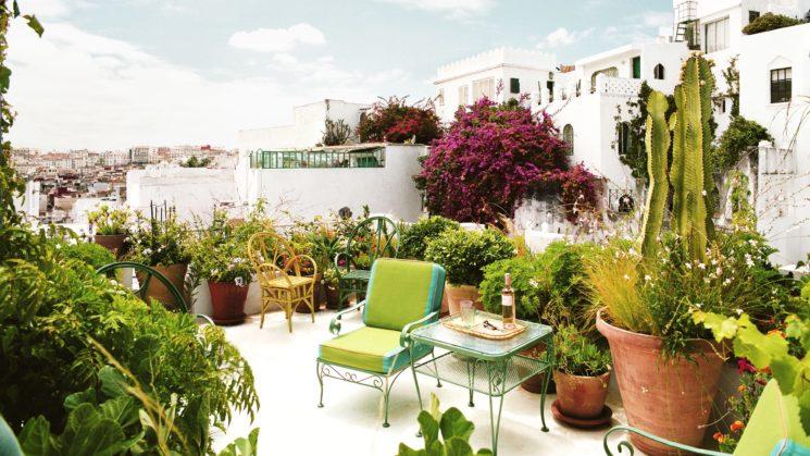 Vivre dedans /dehors || La terrasse de Frank de Biasi et Gene Meyers à Tanger