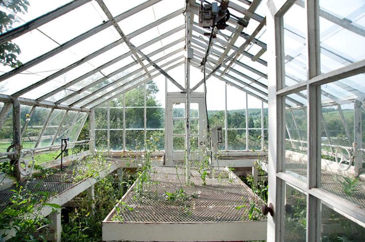 Aménager une serre comme pièce en plus au jardin // Une serre réhabilitée par le duo Emily Henderson et Niki Brantmark de My Scandinavian Home
