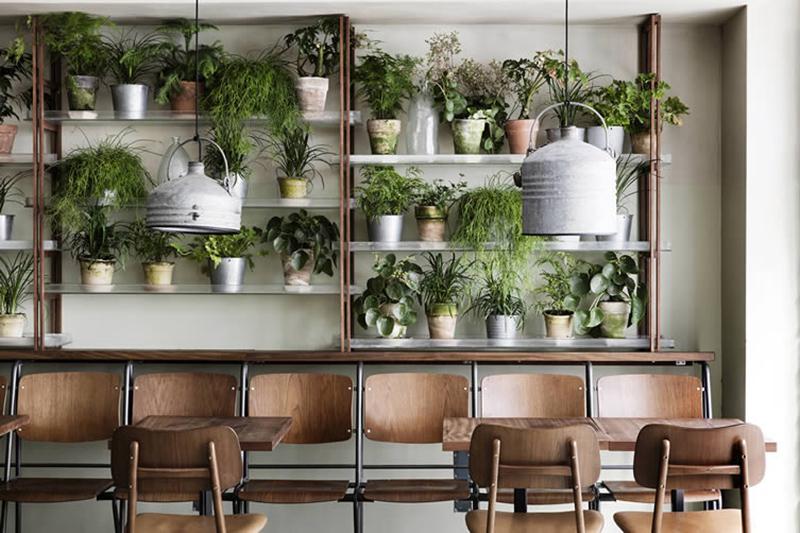 Aménager un jardin d'hiver dans sa véranda // Restaurant café Cofoco à Copenhague // La bonne idée : les étagères de plantes