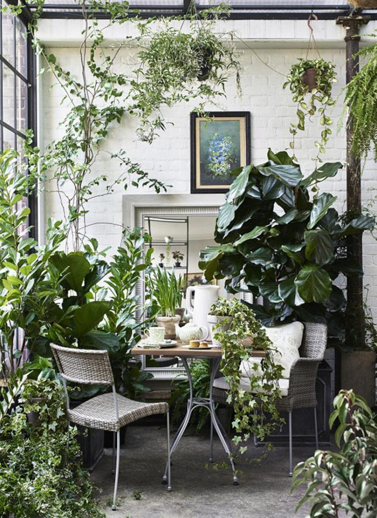 Aménager un jardin d'hiver dans sa véranda // Catalogue Neptune