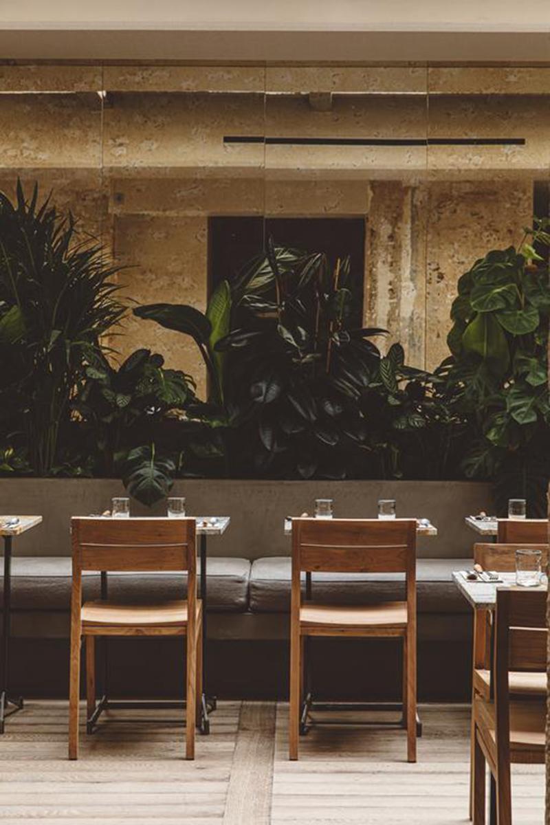 Hoy hôtel à Paris, une esthétique wabi sabi bohème // Salle de restaurant ambiance wabi sabi avec bois brut, plantes et enduit patiné
