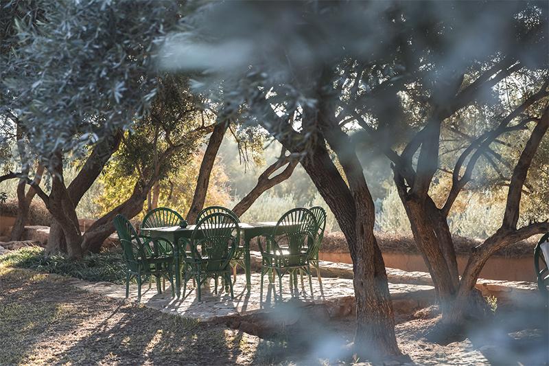 Berber Lodge une ambiance wabi sabi, désert // Ecolodge près de Marrakech