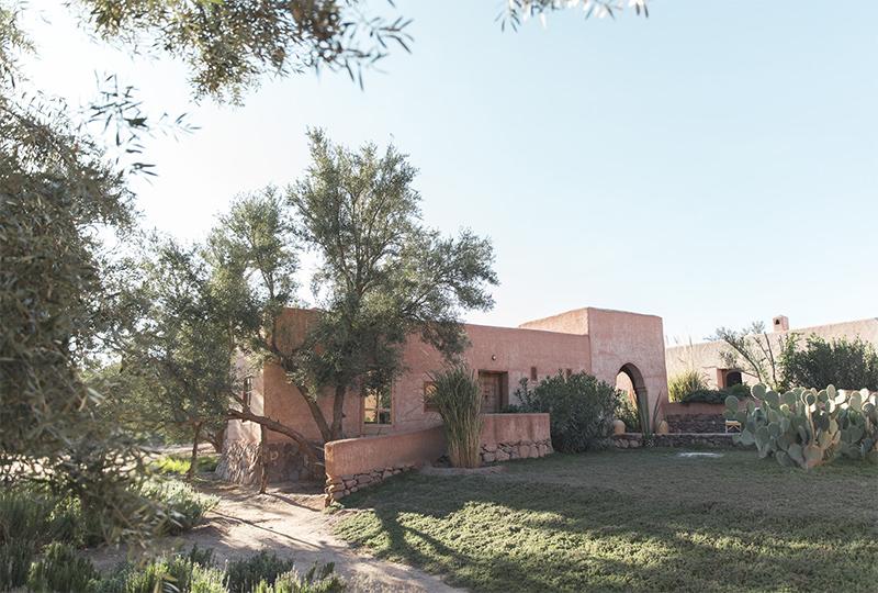 Berber Lodge une ambiance wabi sabi, désert, un écolodge près de Marrakech