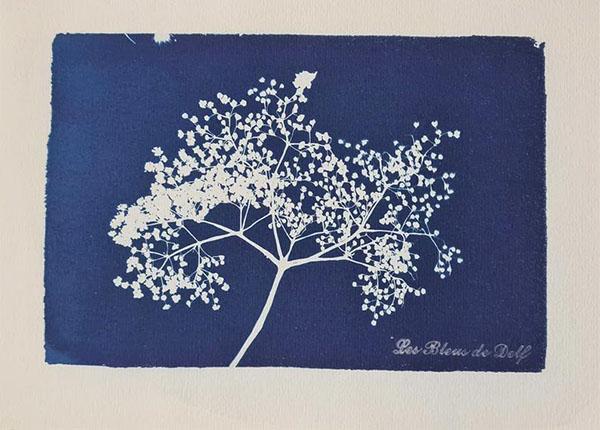 """Cyanotype original """"Arbre Fleurs"""" - Boutique Etsy Les Bleus de Delf"""
