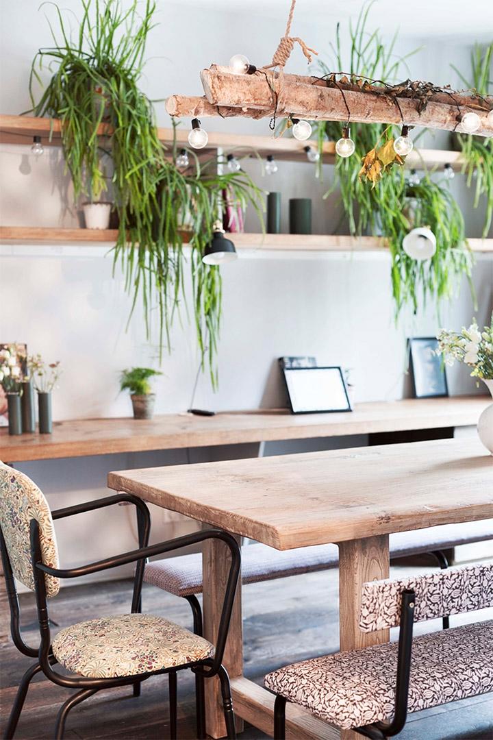 Une installation végétalisée au dessus de la table de salle à manger agrémentée d'une guirlande guinguette.