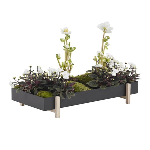 Pot de fleurs Botanic, Tray, design : Atelier 2+ - Design House Stockholm