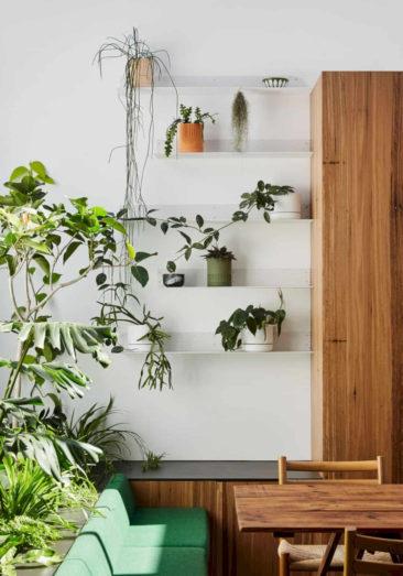 Se créer un mur végétal avec des étagères murales